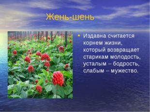 Жень-шень Издавна считается корнем жизни, который возвращает старикам молодос