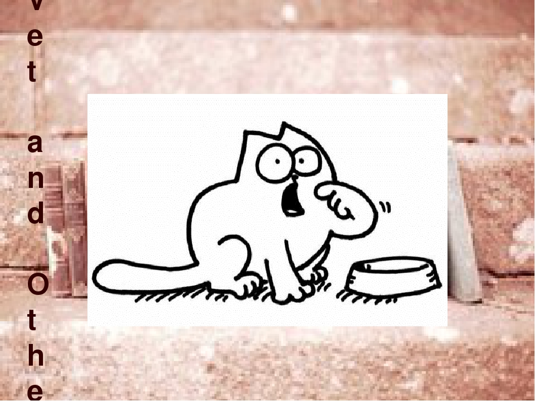 Simon's Cat: Off to the Vet and Other Cat-astrophes