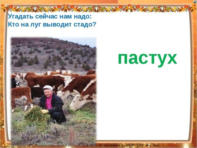 Угадать сейчас нам надо: Кто на луг выводит стадо? пастух Лазарева Лидия Анд...