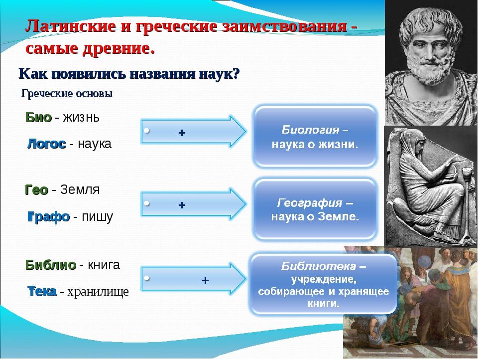 Латинские и греческие заимствования - самые древние. Как появились названия н...