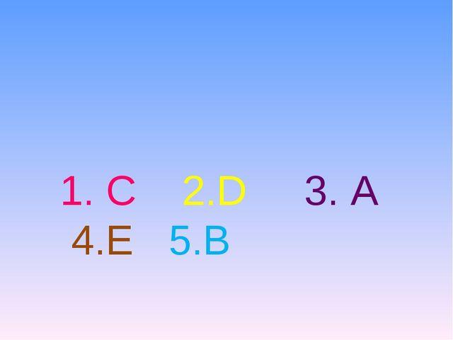 1. C 2.D 3. A 4.E 5.B