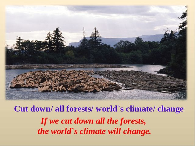 Cut down/ all forests/ world`s climate/ change If we cut down all the forests...