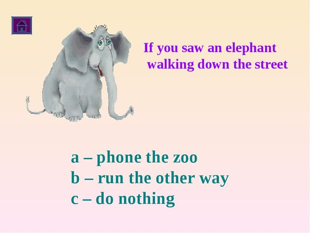 If you saw an elephant walking down the street a – phone the zoo b – run the...
