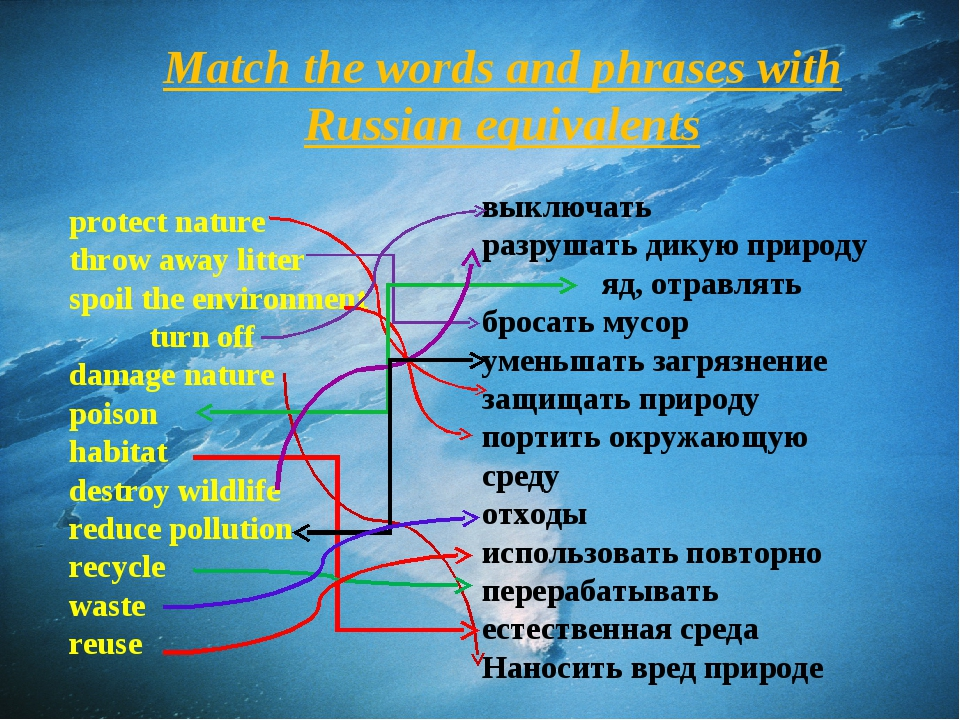 Match the words and phrases with Russian equivalents protect nature throw awa...