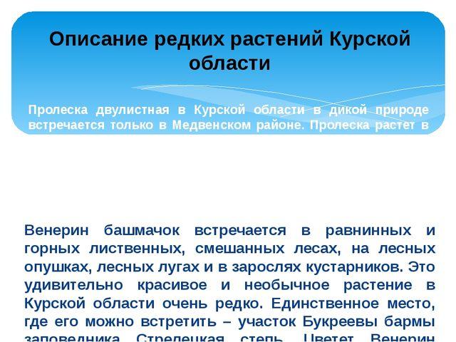Пролеска двулистная в Курской области в дикой природе встречается только в Ме...