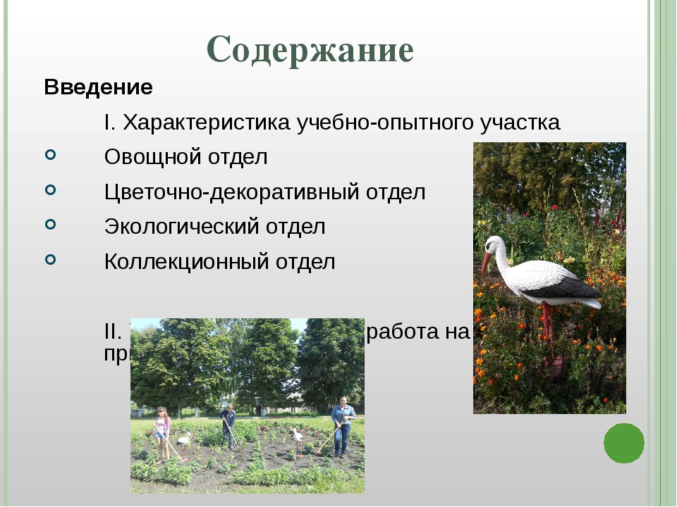 Содержание Введение I. Характеристика учебно-опытного участка Овощной отдел...