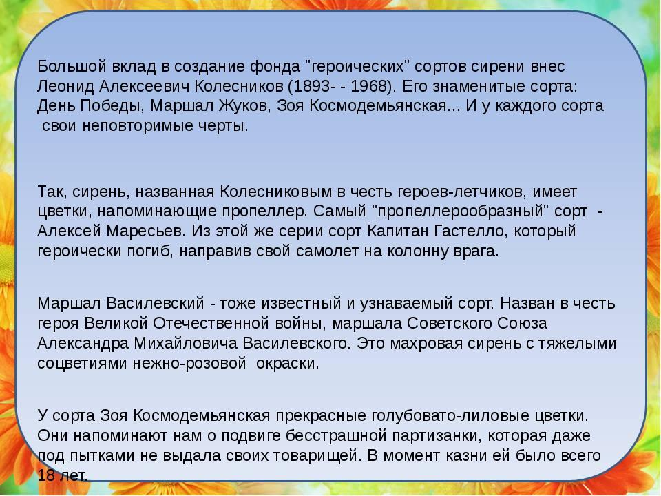 """Большой вклад в создание фонда """"героических"""" сортов сирени внес Леонид Алексе..."""