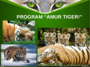 "PROGRAM ""AMUR TIGER!"""