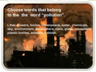 """Choose words that belong to the the word """"pollution"""". Litter, flowers, toxins"""