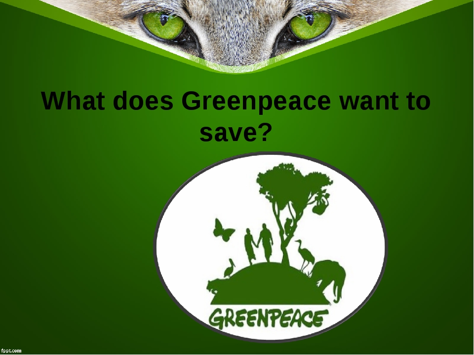 What does Greenpeace want to save?