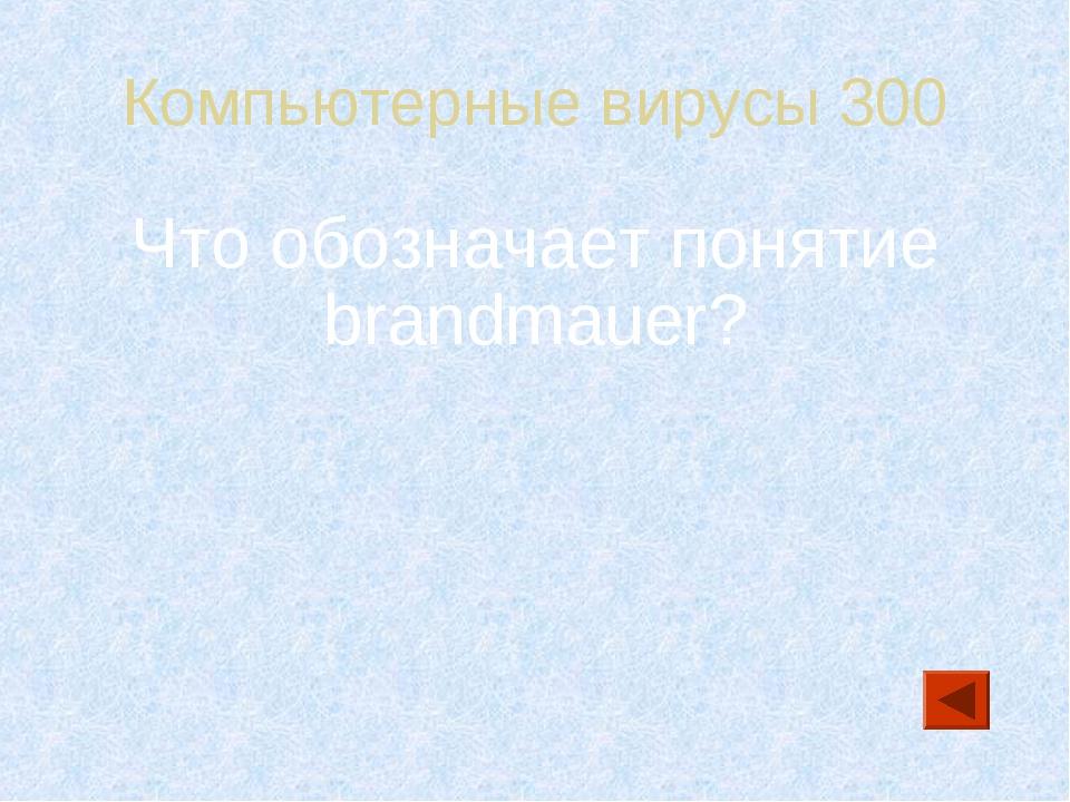 Компьютерные вирусы 300 Что обозначает понятие brandmauer?