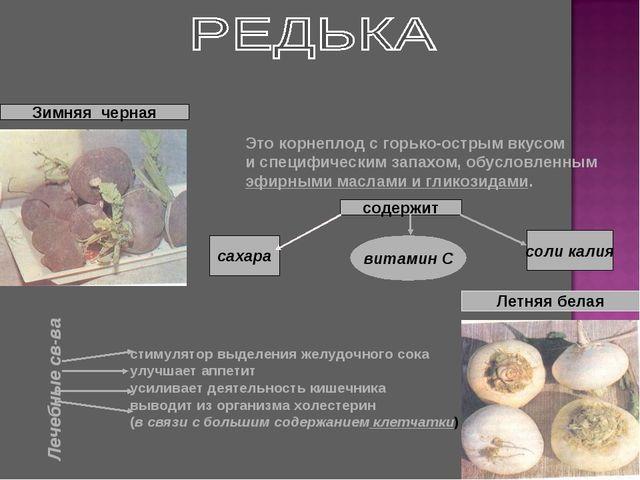 Зимняя черная Летняя белая Это корнеплод с горько-острым вкусом и специфическ...