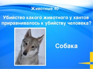 Этимология 20 Slide 3-Question/Answer (Cat1, $100) This slide is the first Q