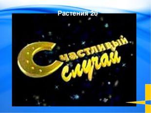 Кому из первых среди нефтяников Сибири было присвоено звание Героя Социалист