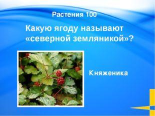 Название этого города означает чистая вода Этимология 100 Пыть-ях Welcome to