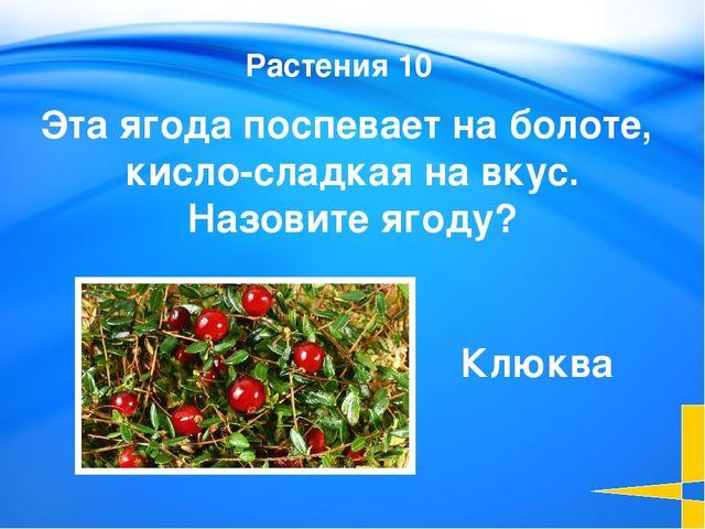Обские угры Назовите общее название народов хантов и манси, которое используе...