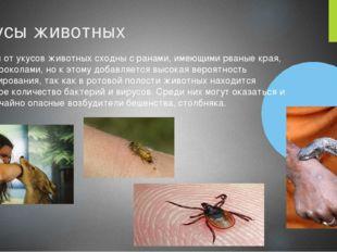 Укусы животных Травмы от укусов животных сходны с ранами, имеющими рваные кра