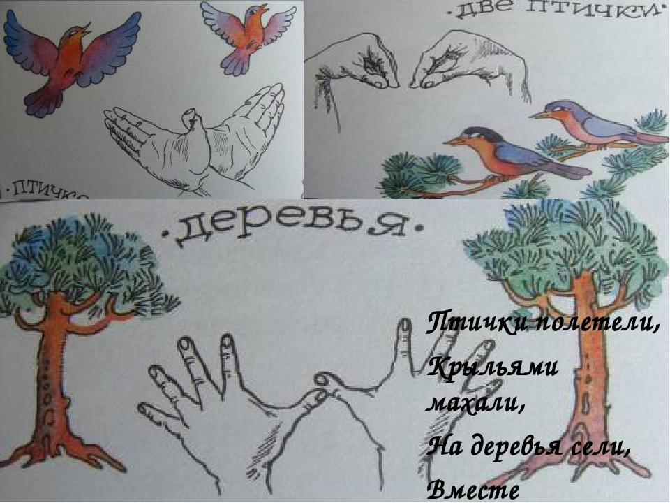 Птички полетели, Крыльями махали, Птички полетели, Крыльями махали, На деревь...