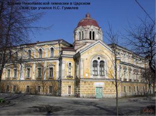 Здание Николаевской гимназии в Царском Селе, где учился Н.С. Гумилев