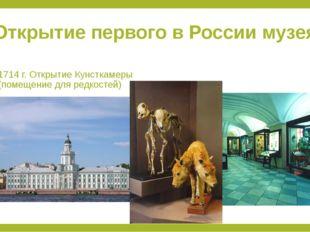 Открытие первого в России музея 1714 г. Открытие Кунсткамеры (помещение для р