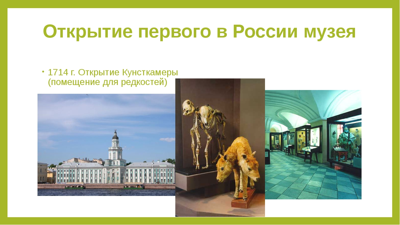 Открытие первого в России музея 1714 г. Открытие Кунсткамеры (помещение для р...