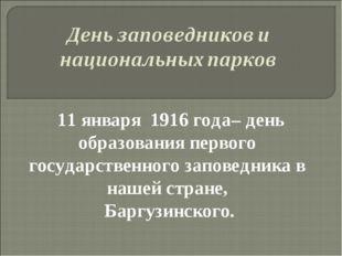 11 января 1916 года– день образования первого государственного заповедника в