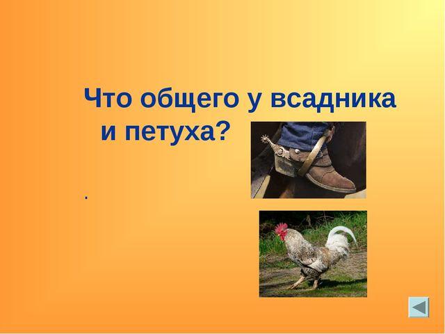 Что общего у всадника и петуха? .