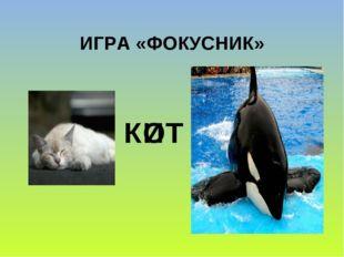 ИГРА «ФОКУСНИК» К Т О И