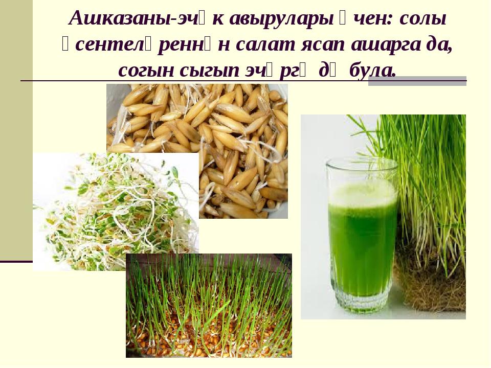 Ашказаны-эчәк авырулары өчен: солы үсентеләреннән салат ясап ашарга да, согын...