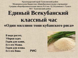 Единый Всекубанский классный час «Один миллион тонн кубанского риса» В воде р