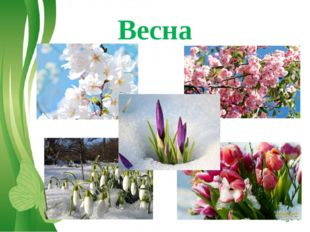 Весна Free Powerpoint Templates Page *