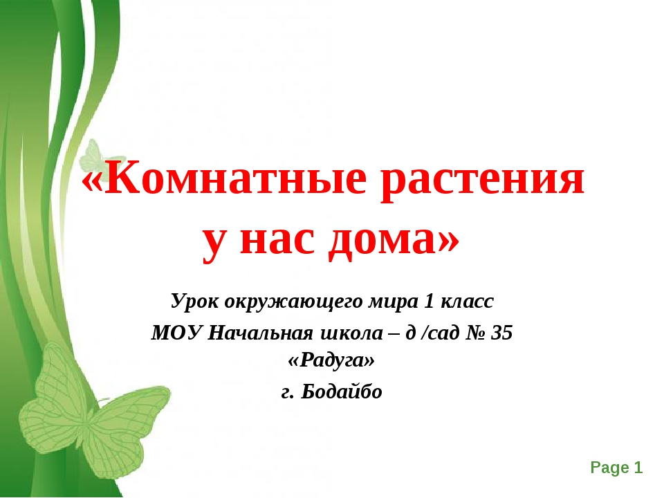 «Комнатные растения у нас дома» Урок окружающего мира 1 класс МОУ Начальная ш...