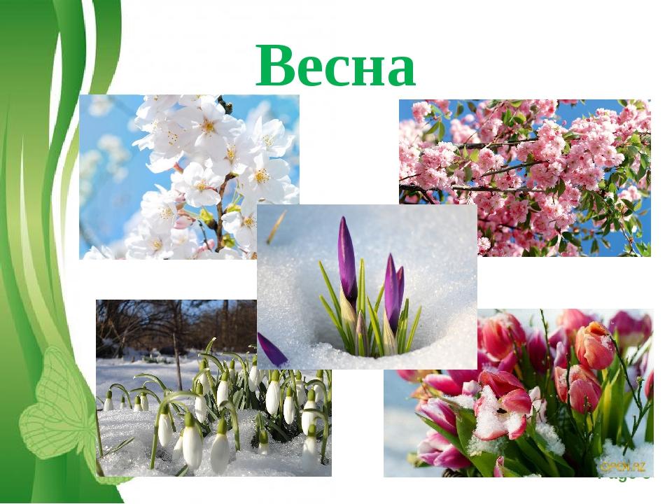 Весна Free Powerpoint Templates Page *
