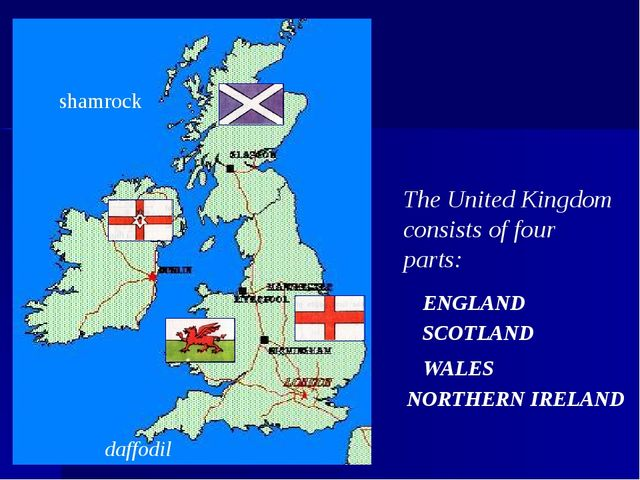 The United Kingdom consists of four parts: ENGLAND SCOTLAND WALES daffodil sh...