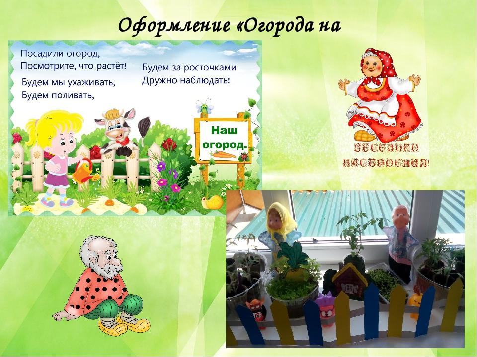 Картинка к проекту огород на окне