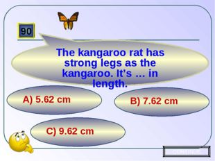 C) 9.62 cm B) 7.62 cm А) 5.62 cm 90 The kangaroo rat has strong legs as the k
