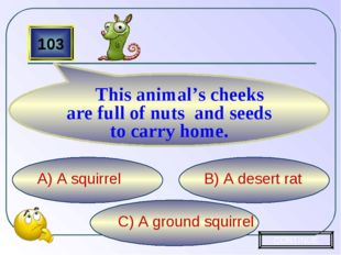 C) A ground squirrel B) A desert rat A) A squirrel 103 This animal's cheeks a