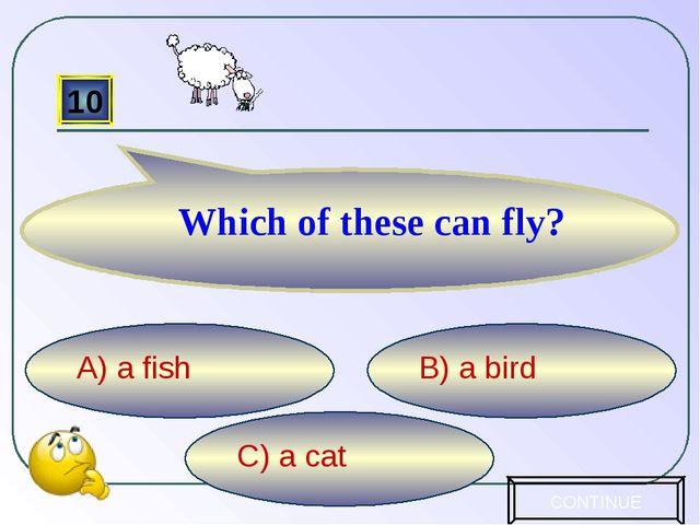 C) a cat B) a bird A) a fish 10 Which of these can fly? CONTINUE