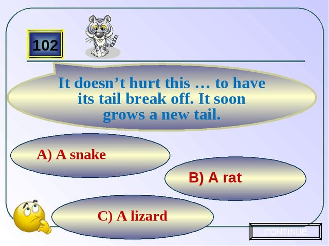 C) A lizard B) A rat A) A snake 102 It doesn't hurt this … to have its tail b...