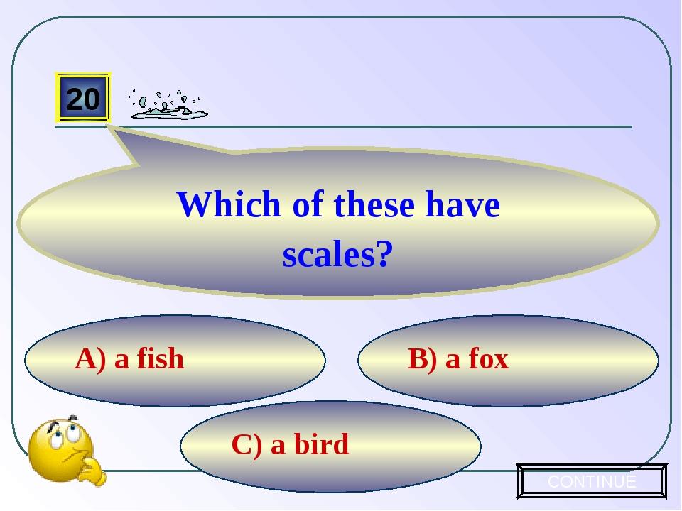 C) a bird B) a fox A) a fish 20 Which of these have scales? CONTINUE