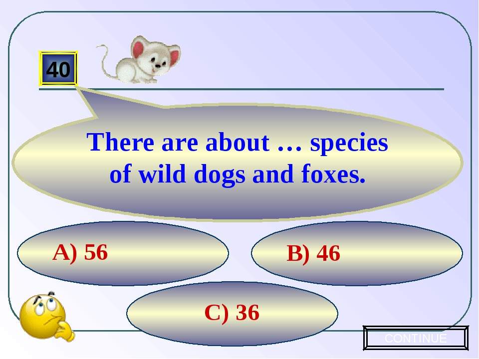 C) 36 B) 46 A) 56 40 There are about … species of wild dogs and foxes. CONTINUE