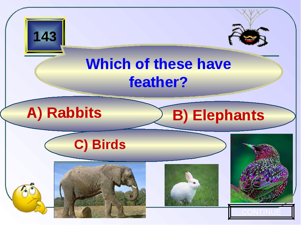 C) Birds B) Elephants A) Rabbits 143 Which of these have feather? CONTINUE