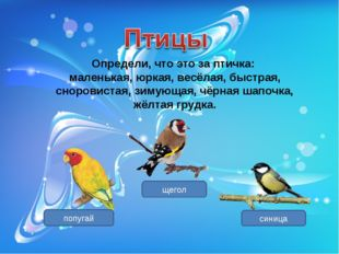 Определи, что это за птичка: маленькая, юркая, весёлая, быстрая, сноровистая,
