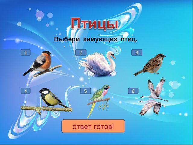 Выбери зимующих птиц. 1 4 3 5 2 6 ответ готов!