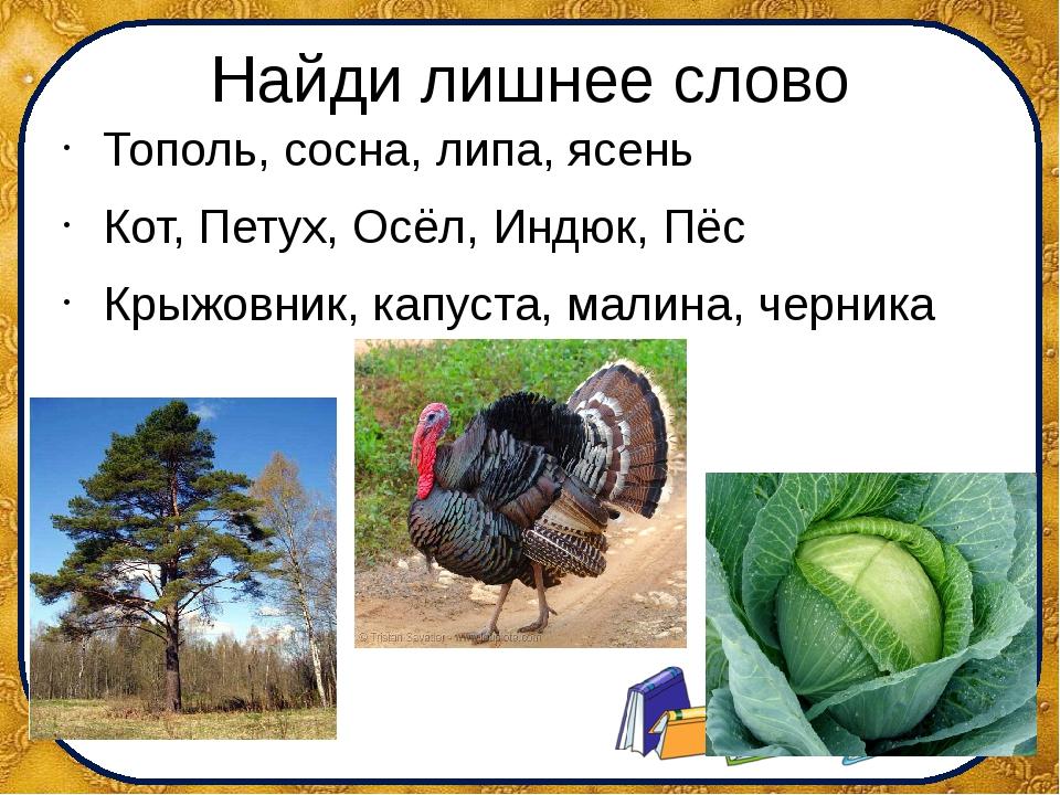 Найди лишнее слово Тополь, сосна, липа, ясень Кот, Петух, Осёл, Индюк, Пёс Кр...