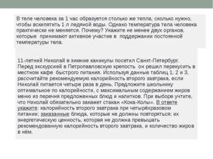 11-летний Николай в зимние каникулы посетил Санкт-Петербург. Перед экскурсие