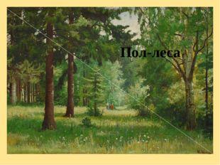 Пол-леса