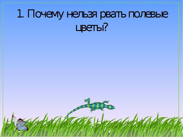 1. Почему нельзя рвать полевые цветы?