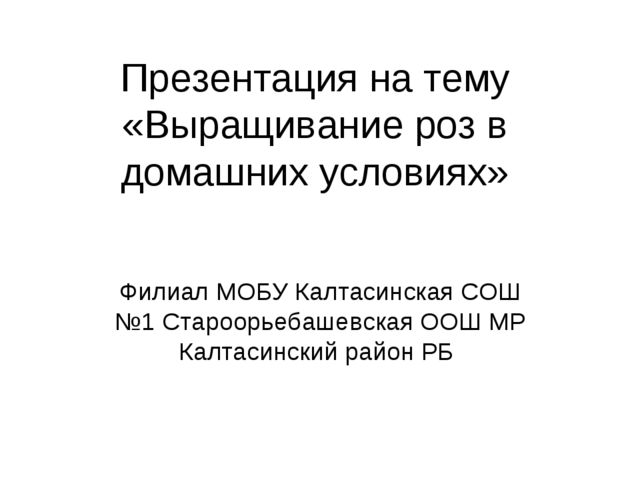 Презентация на тему «Выращивание роз в домашних условиях» Филиал МОБУ Калтаси...