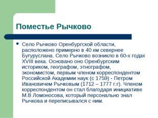 Поместье Рычково Село Рычково Оренбургской области, расположено примерно в 40